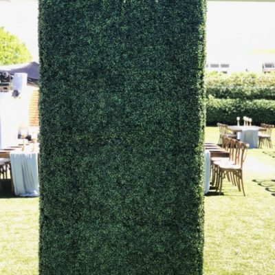 8' x 4' Boxwood Hedge Wall - $250.00