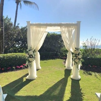 Botanical White Arch with white or ivory draping - $450.00